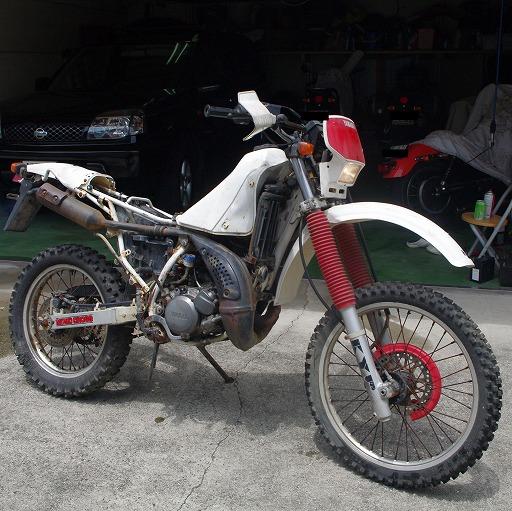 SHIN410600